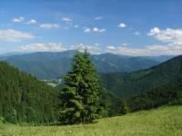 pohled k Nizkym Tatram